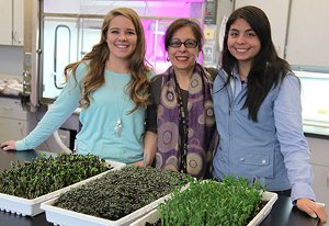 From left, Taylor West, Constanza Hazelwood and Karla Vega with greens grown in the vertical agriculture structure shown behind them.