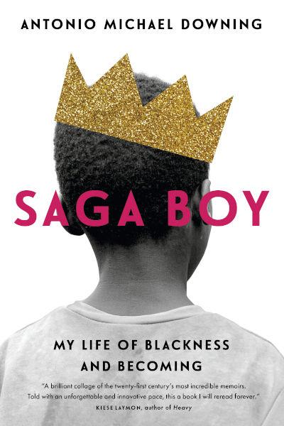 Saga Boy book cover